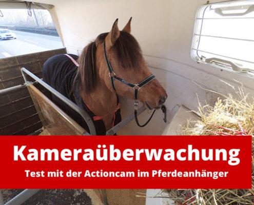 Kameraüberwachung mit Handy: Test mit der Actioncam im Pferdeanhänger