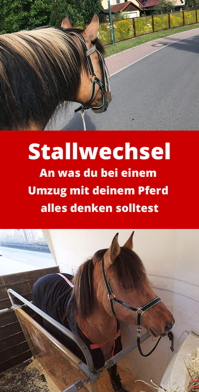 Checkliste Stallwechsel: An was du bei einem Umzug mit deinem Pferd alles denken solltest